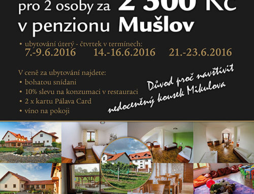 Zvýhodněný pobyt na Jižní Moravě 2016