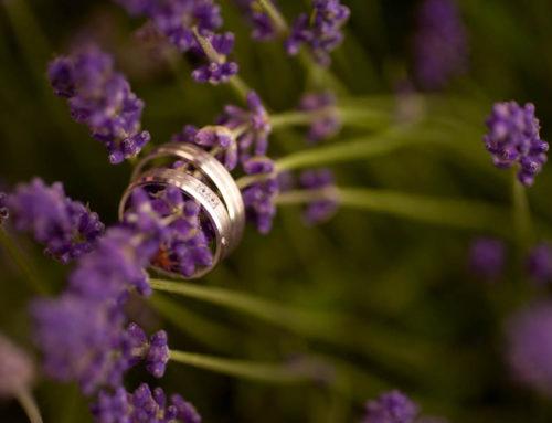 Svatba na Mušlově